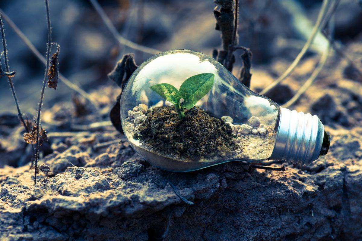 Charleville-Mézières 2030 : Zéro déchets et énergie positive toute la journée au théâtre