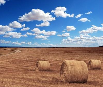 Les métiers et formations de l'agriculture - Châlons-en-Champagne