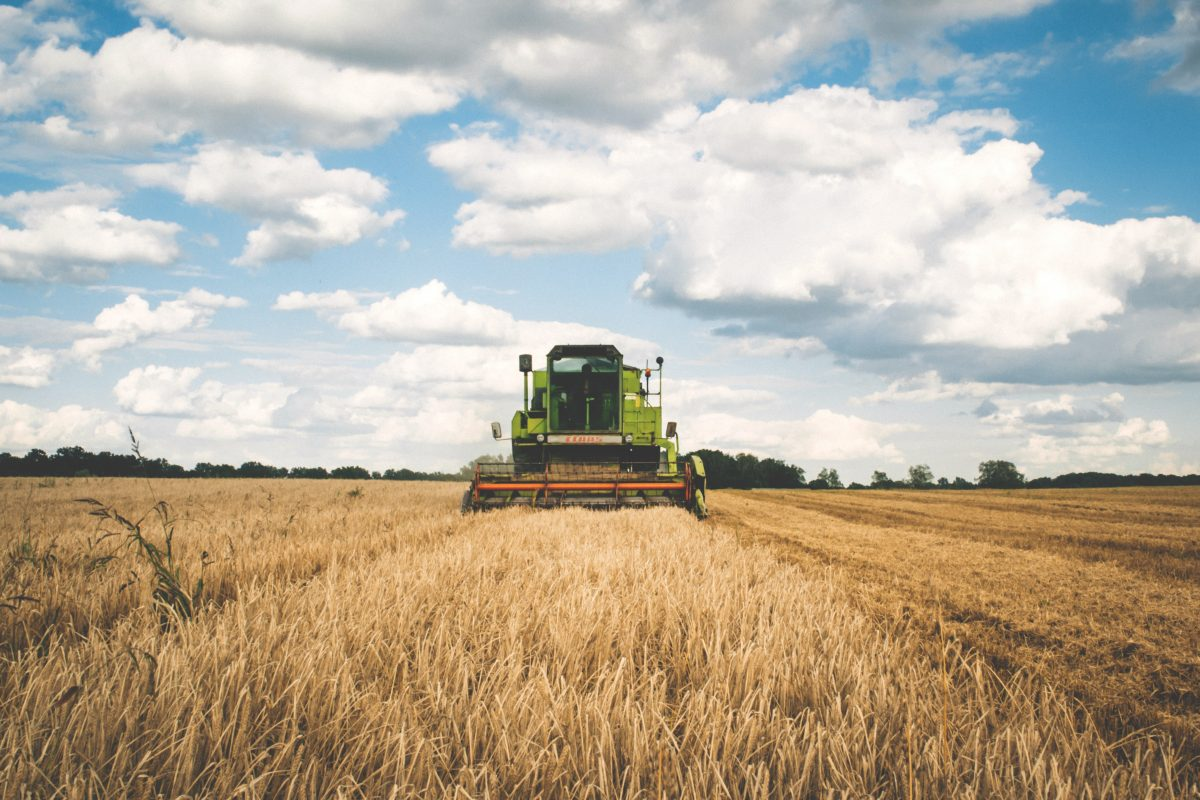 Covid-19 : aidez l'agriculture grâce à l'initiative #desbraspourtonassiette